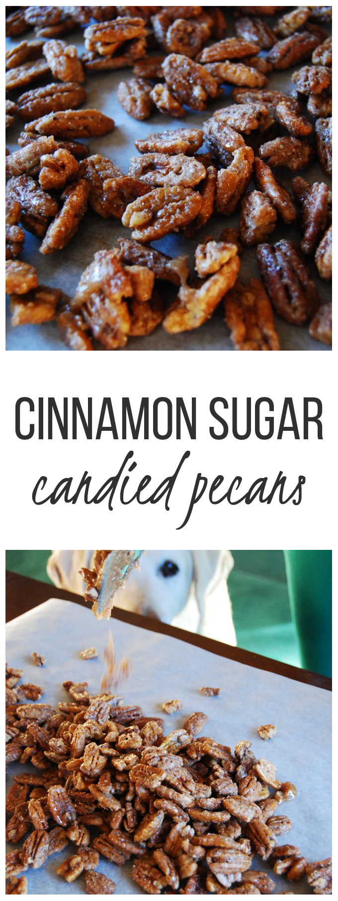 Cinnamon Sugar Candied Pecans!