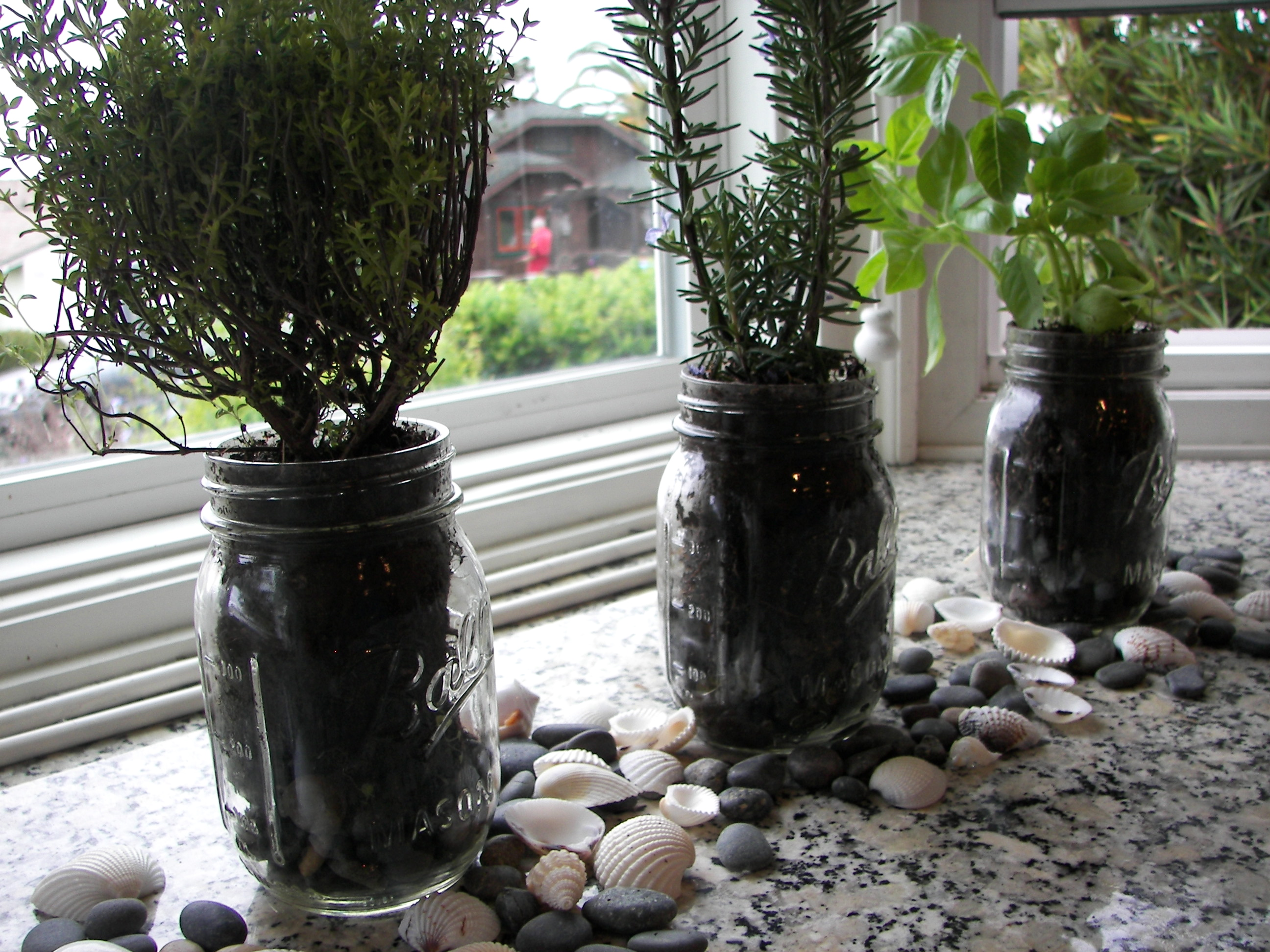 Mason jar herb garden little bits of for Indoor gardening market size