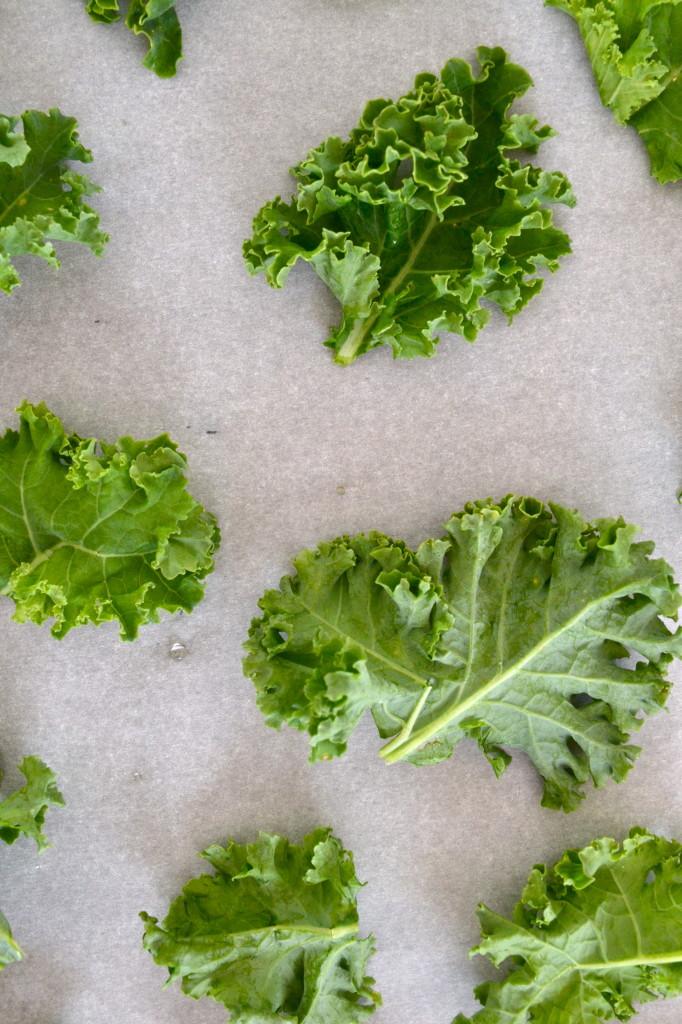 Crispy, Salted Kale Chips