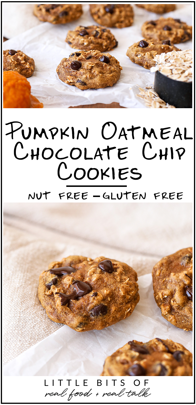 These Pumpkin Oatmeal Chocolate Chip Cookies are gluten free, dairy free and nut free - perfect for those with allergies!